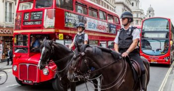Webinar – Police Horses – Life On The Beat by Carolien Munster