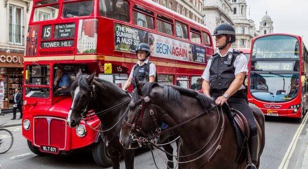 Webinar – Police Horses – Life On The Beat by Carolien Munster