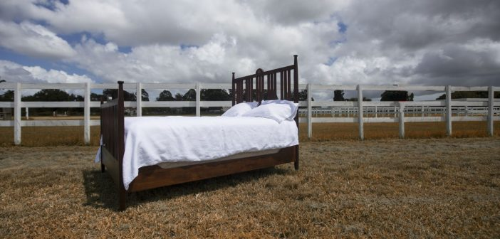 Next Webinar –  Bedding Test Results Live with Dr David Marlin – the results are shocking!